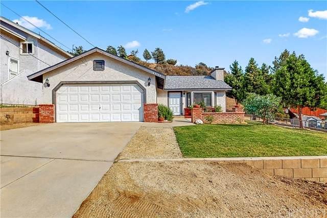 43324 Lookabout Road, Lake Hughes, CA 93532 (#SR21162567) :: Montemayor & Associates