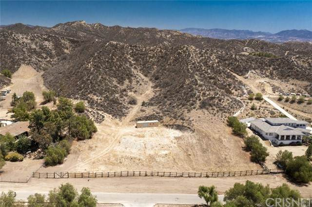 30700 Romero Canyon Road, Castaic, CA 91384 (#SR21166465) :: The Bobnes Group Real Estate