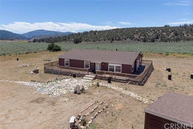 16190 E Mountain Lilac, Frazier Park, CA 93225 (#SR21167387) :: Montemayor & Associates