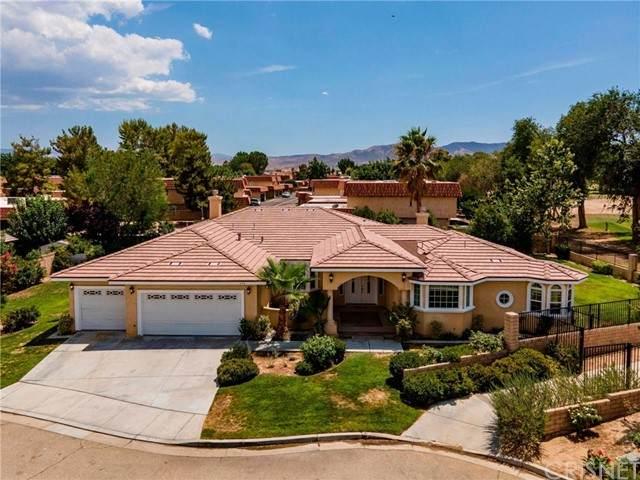 246 W Quail Drive, Palmdale, CA 93551 (#SR21169572) :: TruLine Realty
