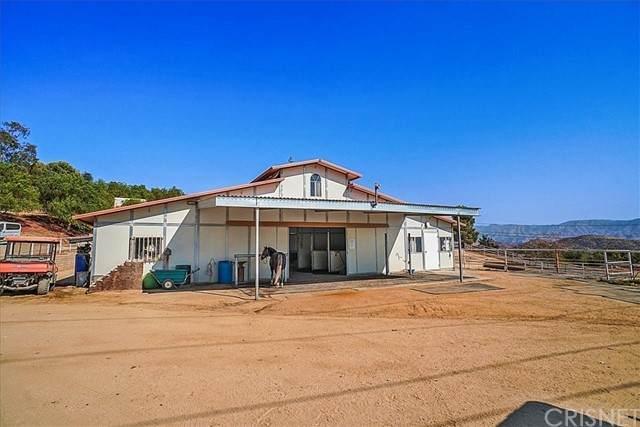 33550 Domino Hill Road, Agua Dulce, CA 91390 (#SR21174634) :: The Bobnes Group Real Estate