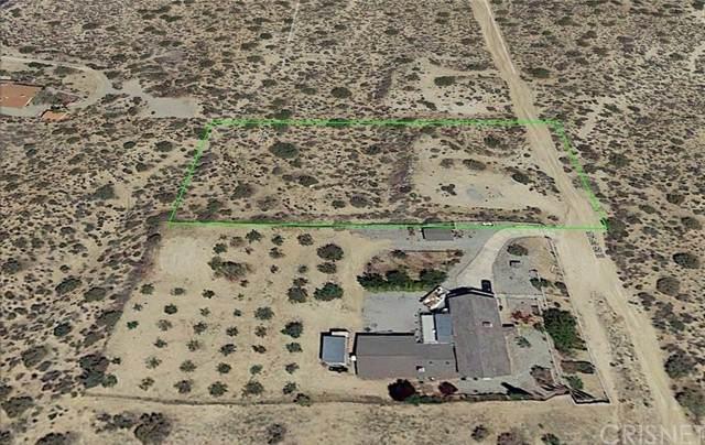 31215 161st St E, Llano, CA 93544 (#SR21184290) :: Vida Ash Properties | Compass
