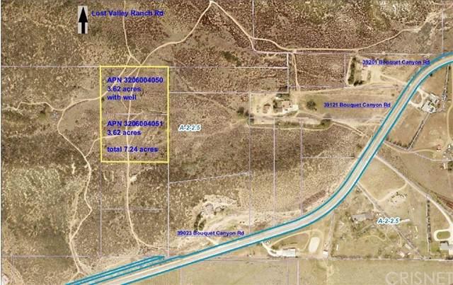 0 Bouquet Canyon Rd, Leona Valley, CA 93551 (#SR21186627) :: Montemayor & Associates