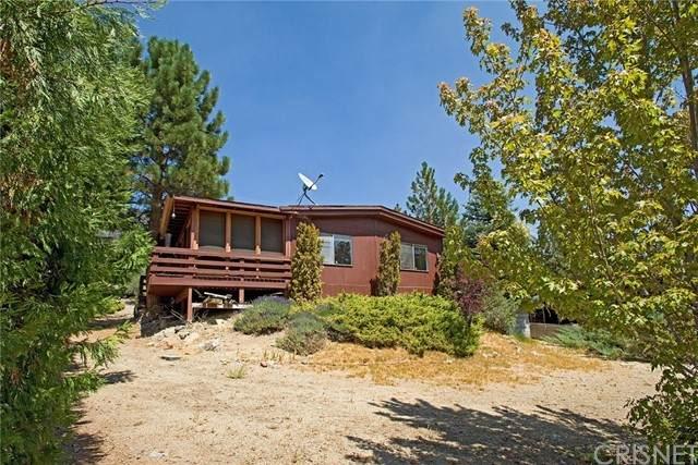 16708 Aleutian Drive, Pine Mountain Club, CA 93222 (#SR21190781) :: Lydia Gable Realty Group