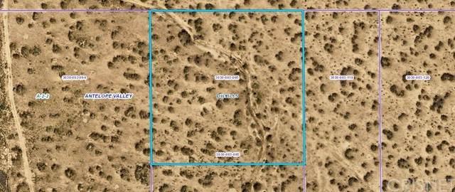 0 Vac/Vic Avenue R12/185 Ste, Llano, CA 93591 (#SR21194002) :: Vida Ash Properties | Compass