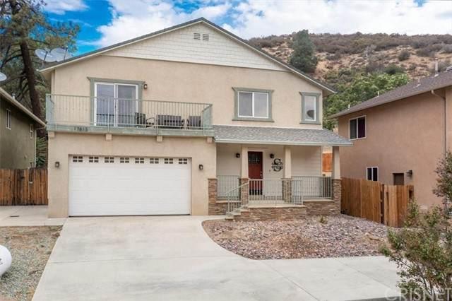 17813 Elizabeth Lake Road, Lake Hughes, CA 93532 (#SR21193369) :: Montemayor & Associates