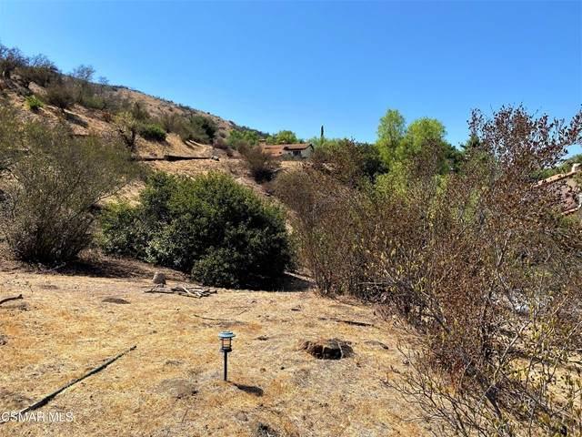 4827 Canyon Way, Agoura Hills, CA 91301 (#221004904) :: Vida Ash Properties | Compass