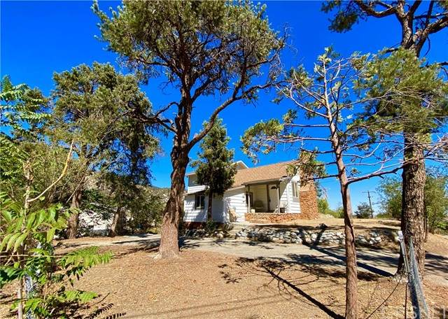 3441 Santa Clara, Frazier Park, CA 93225 (#SR21200858) :: Lydia Gable Realty Group