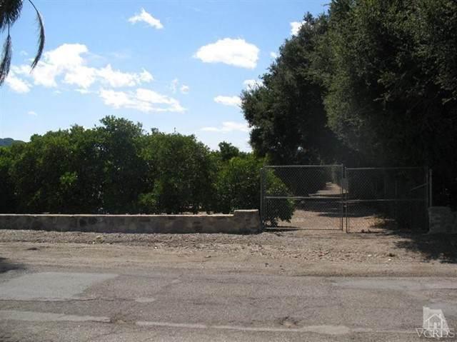 567 Mcnell Road, Ojai, CA 93023 (#V1-8380) :: The Suarez Team