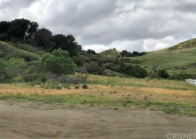 0 Placerita Canyon Road, Canyon Country, CA 91387 (#SR21203150) :: Randy Plaice and Associates