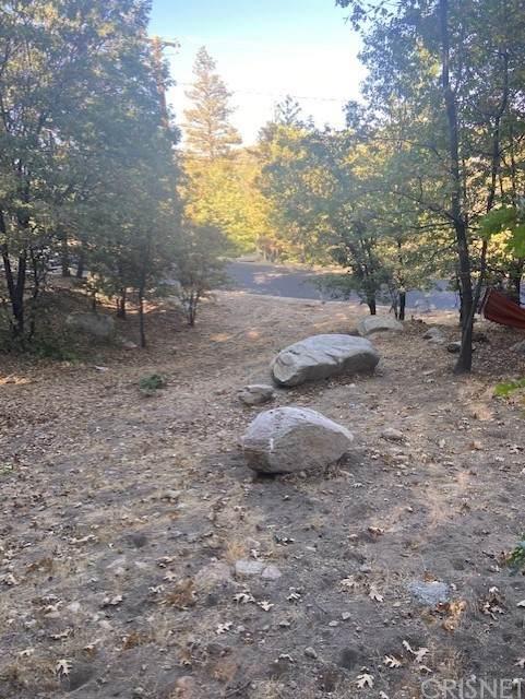 1254 Portillo Lane, Lake Arrowhead, CA 92352 (#SR21207441) :: Montemayor & Associates