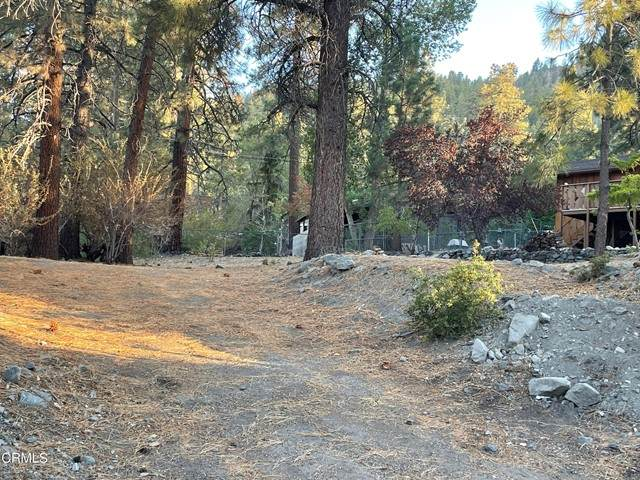 0 Orchard, Wrightwood, CA 92397 (#P1-6759) :: The Suarez Team