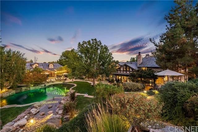 30715 Burlwood Drive, Castaic, CA 91384 (#SR21206117) :: Powell Fine Homes Group, Inc.