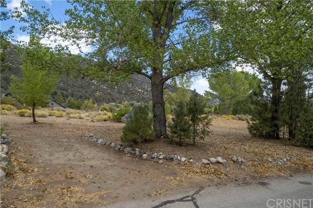 2624 Beechwood, Pine Mountain Club, CA 93222 (#SR21213292) :: The Suarez Team