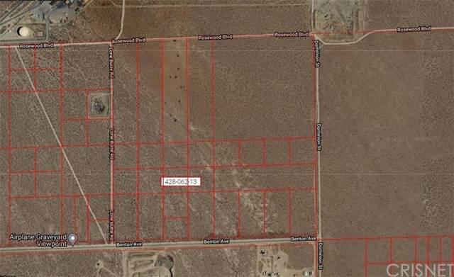 0 Lone Butter Rd/Benton Avenue, Mojave, CA 93501 (#SR21211203) :: The Bobnes Group Real Estate