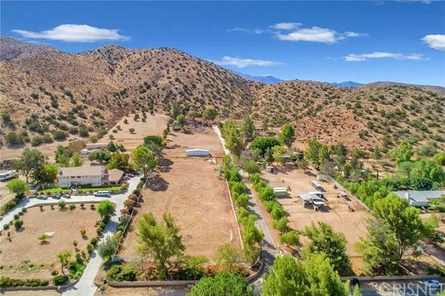 2652 Bent Spur Drive, Acton, CA 93510 (#SR21219406) :: Berkshire Hathaway HomeServices California Properties