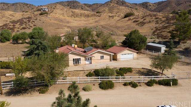 8545 Calva Street, Leona Valley, CA 93551 (#SR21220187) :: The Bobnes Group Real Estate