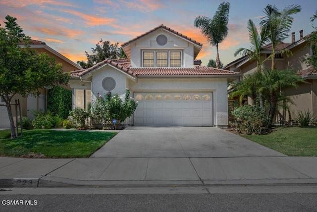 223 Saint Croix Court, Oak Park, CA 91377 (#221005436) :: The Bobnes Group Real Estate