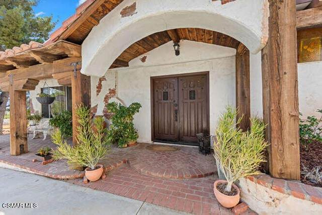 35515 Wyse Road, Agua Dulce, CA 91390 (#221005441) :: The Bobnes Group Real Estate