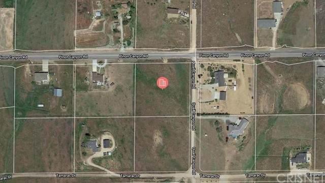 0 S/W Cor. Pinon Cnyn Rd & Quail Canyon Rd, Tehachapi, CA 93561 (#SR21224224) :: The Bobnes Group Real Estate