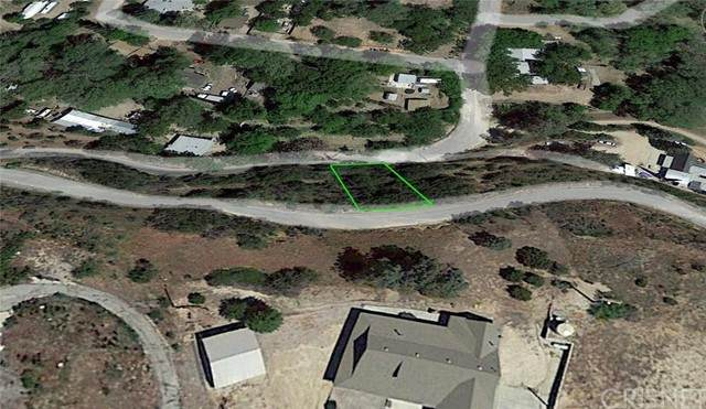 1 Vac/Austin Way/Sylvan Drive, Lake Hughes, CA 93532 (#SR21226596) :: The Bobnes Group Real Estate