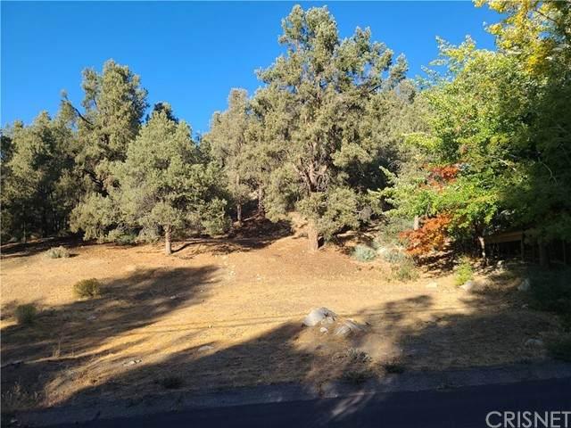 2204 Woodland Drive, Pine Mountain Club, CA 93222 (#SR21229920) :: The Parsons Team
