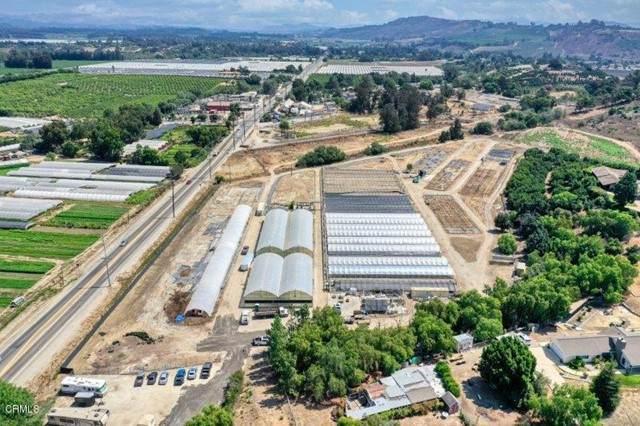 3900 Groves Place, Somis, CA 93066 (#V1-9006) :: Vida Ash Properties | Compass