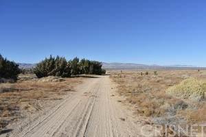 18000 Vac/Vic 180 Stw/Ave C8, Lancaster, CA 93536 (#SR21234198) :: Vida Ash Properties | Compass