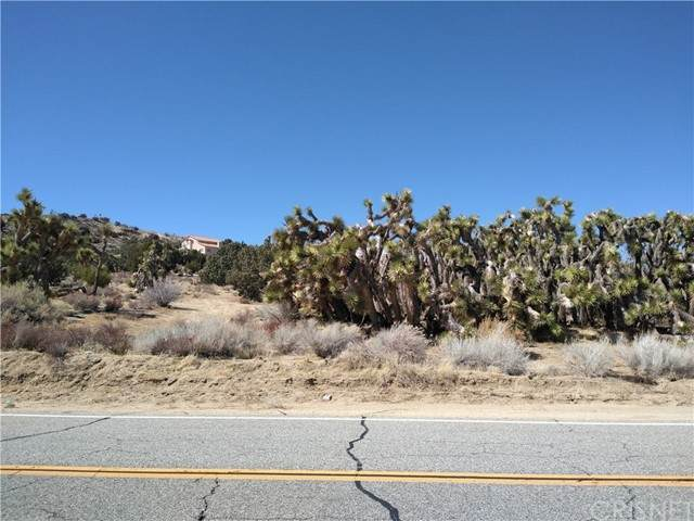 0 Longview Rd & Old Homestead, Juniper Hills, CA 93543 (#SR21234195) :: Vida Ash Properties | Compass