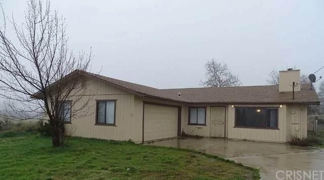 27540 Hialeah Drive, Tehachapi, CA 93561 (#SR21233854) :: The Bobnes Group Real Estate