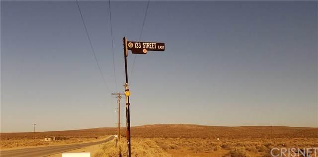 133 Vac/Vic 133 Ste/Ave D12, Lancaster, CA 93535 (#SR19180340) :: Harcourts Bella Vista Realty