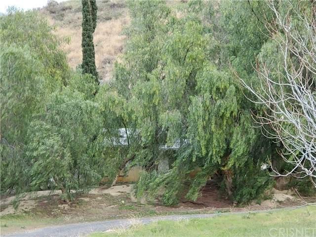 28402 Bouquet Canyon Road - Photo 1