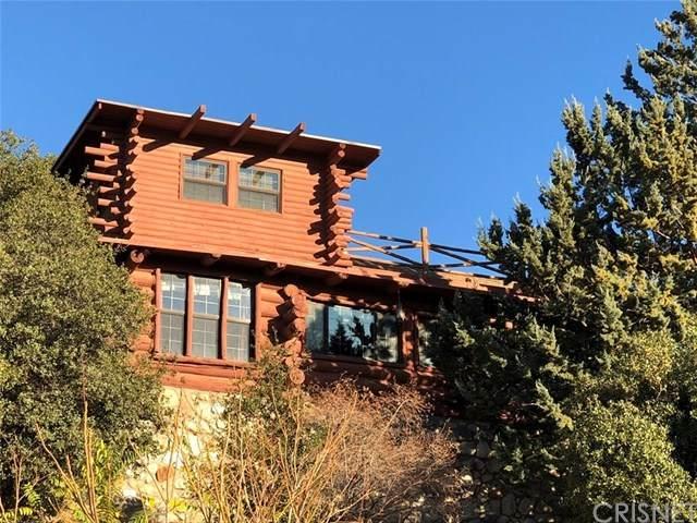 17359 Elizabeth Lake Road, Lake Hughes, CA 93532 (#SR20071787) :: Randy Plaice and Associates
