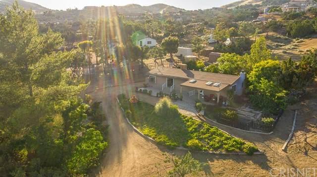 6325 Quail Road, Agua Dulce, CA 91390 (#SR20109069) :: Randy Plaice and Associates