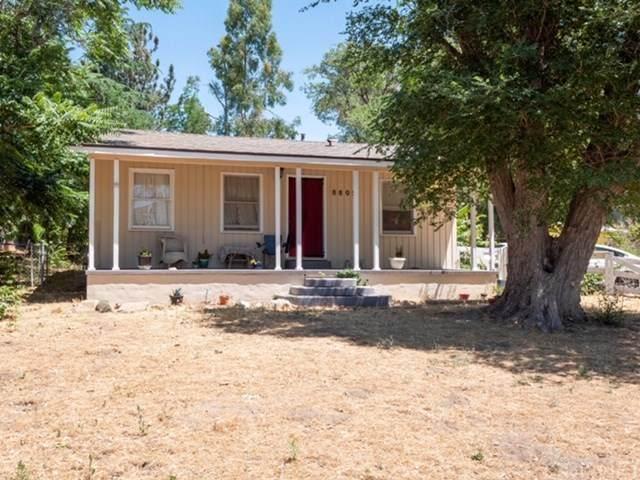 8805 Elizabeth Lake Road, Leona Valley, CA 93551 (#SR20118272) :: Randy Plaice and Associates