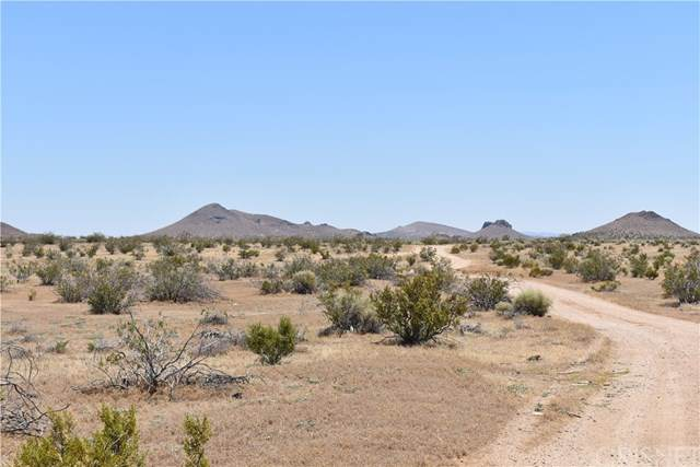 100 E Laguna Ave, Mojave, CA 93501 (#SR20144392) :: Randy Plaice and Associates