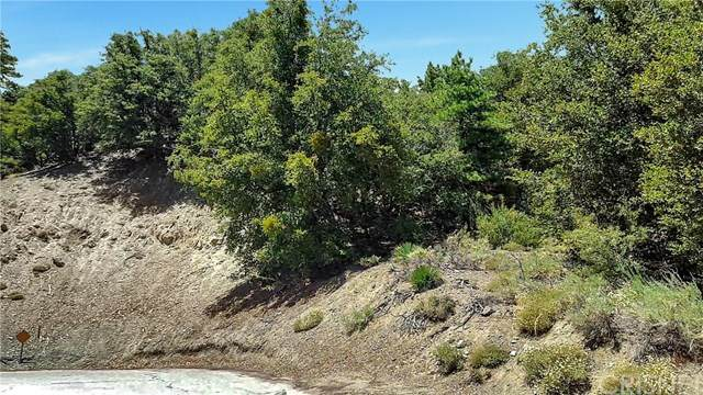 0 Timberline Drive, Wrightwood, CA 93544 (#SR20154499) :: The Bobnes Group Real Estate