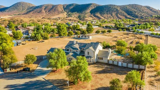 9810 Bald Mountain Court, Agua Dulce, CA 91390 (#SR20204556) :: Lydia Gable Realty Group
