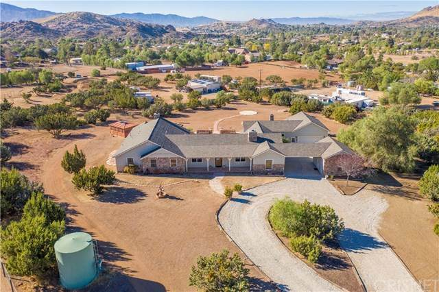 10350 Pike Road, Agua Dulce, CA 91390 (#SR20231842) :: Lydia Gable Realty Group