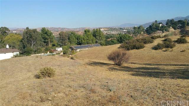 0 8th Street, Newhall, CA 91321 (#SR20234701) :: Lydia Gable Realty Group