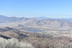 22750 Gotthard Court, Tehachapi, CA 93561 (#SR20261927) :: Lydia Gable Realty Group