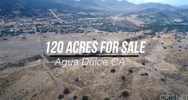 0 Vac/Thomas Rd/Vic Robinsong Road, Agua Dulce, CA 93510 (#SR21023612) :: HomeBased Realty