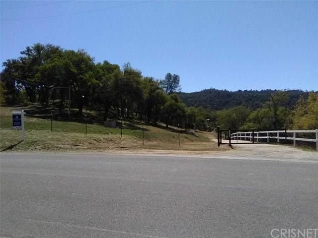 14615 Chimney Rock Road, Paso Robles, CA 93446 (#SR21077271) :: Randy Plaice and Associates