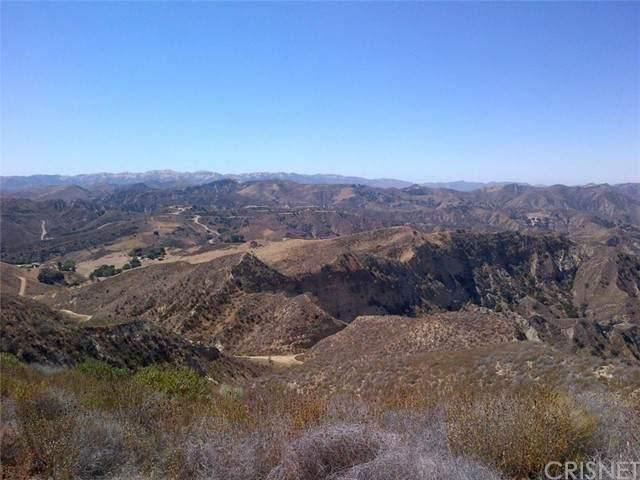 0 Burlwood Dr, Castaic, CA 91387 (#SR21080366) :: The Bobnes Group Real Estate
