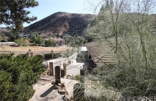 95 Buckskin Road, Bell Canyon, CA 91307 (#SR21050989) :: Randy Plaice and Associates