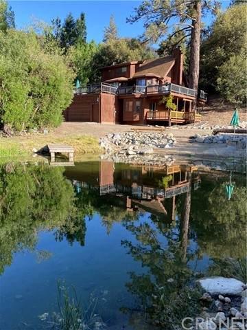 2616 Basel Court, Pine Mountain Club, CA 93222 (#SR21121549) :: Lydia Gable Realty Group