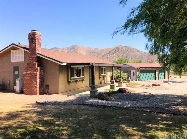 1380 Soledad Canyon Road, Acton, CA 93510 (#SR21124787) :: Montemayor & Associates