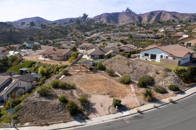 1005 Horizon Drive, Ventura, CA 93003 (#V1-7114) :: Lydia Gable Realty Group