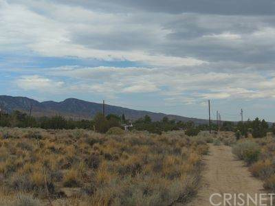 0 Pinon Hills, Pinon Hills, CA 92372 (#SR21164427) :: Berkshire Hathaway HomeServices California Properties