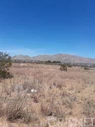 23940 Thunderbird Road, Apple Valley, CA 92307 (#SR21207200) :: The Bobnes Group Real Estate